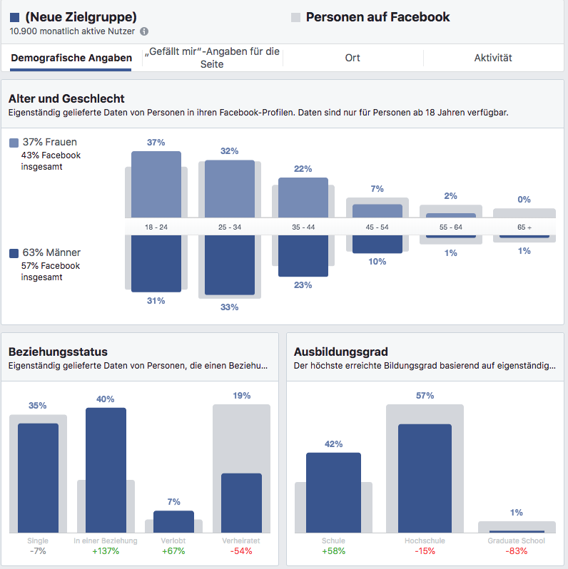 Audience Insights für optimierte Facebook Ads